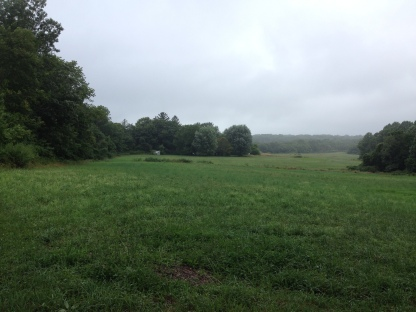 "This is the site of David Ferman's (Apess spells his name ""Furman"") farm where Apess served as an indentured servant as a child from roughly 1804-1811. It is on The Old Colchester Rd. (today State Highway 354) very close to Gardner Lake. Based on textual and anecdotal evidence, I believe that Apess's maternal grandmother lived somewhere near the lake shore, within a mile of the Ferman house, as this was known as an ""Indian"" neighborhood at the time."